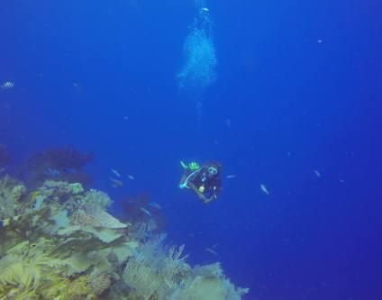 At the drop off at South Water Caye