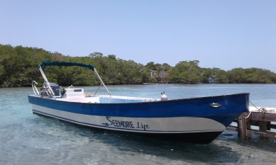 Seemore Life, our 26ft dive boat